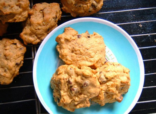 pumpkin chocolate chip oatmeal cookies | everybody likes sandwiches