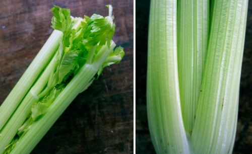 tangy parmesan celery salad | everybody likes sandwiches