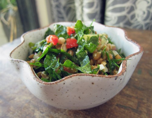 kale & farro salad | everybody likes sandwiches